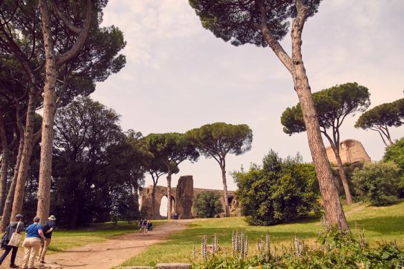 palatin, hügel, rom, rome, sightseeing, blog