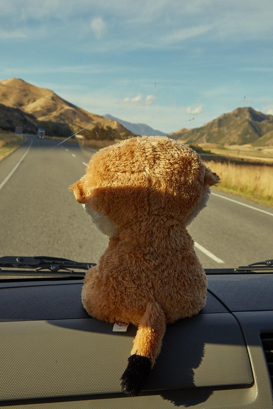 Losgestartet sind wir von Christchurch. Los geht unser Neuseeland Roadtrip