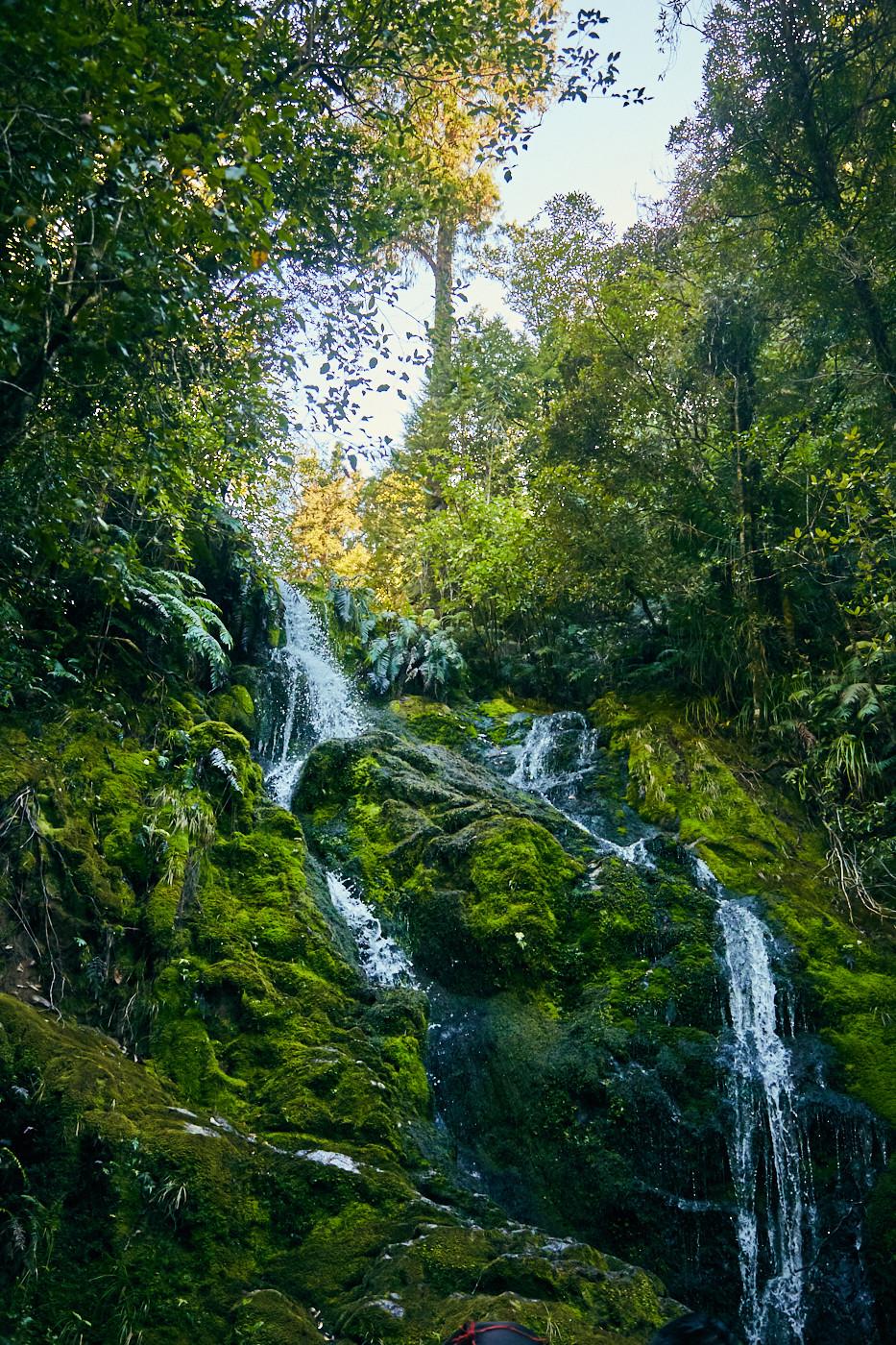 Der Cascade Creek im Abel Tasman Nationalpark auf der Südinsel von Neuseeland. Ein schöner Wasserfall mittem im Regenwald