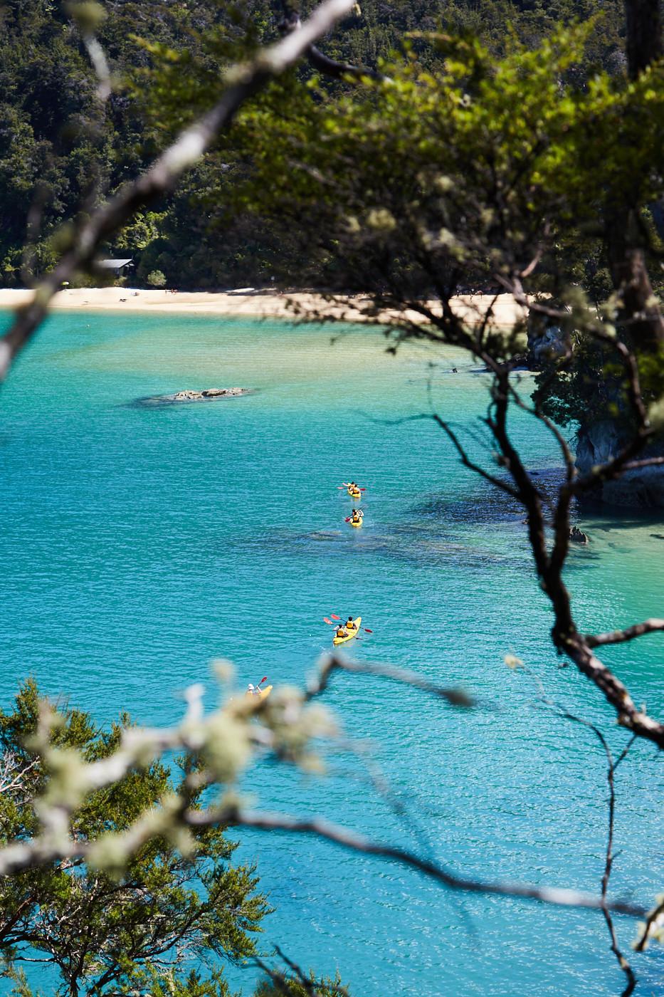 Kajaks im Abel Tasman Nationalpark. Auf einem Neuseeland Roadtrip sollte der Coastal Track nicht fehlen!