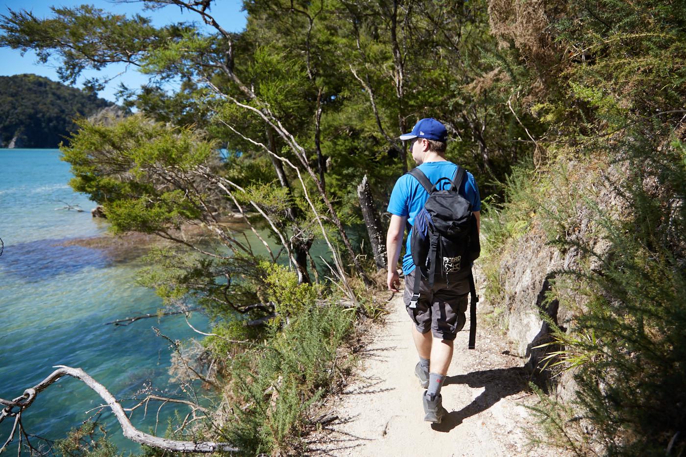 Der Weg entlang des Wassers auf dem Coastal Track im Abel Tasman Nationalpark