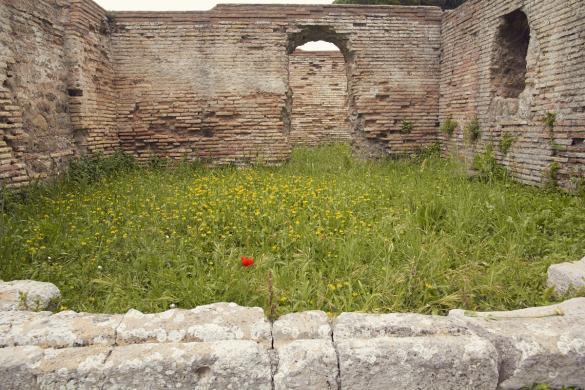 Ostia Antica, miles and shores, Rom, Städtetrip, citytrip, reisen, Reiseblog, Ruinen, Ruinenstadt, Mohnblume, alte Stadt