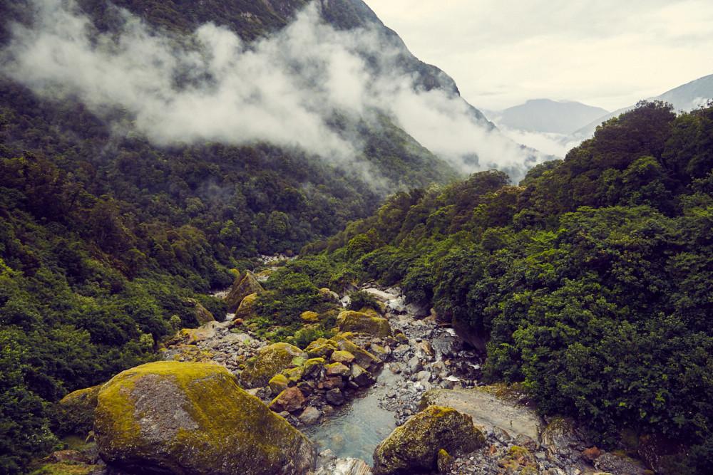 Aussicht, View, Copland Track to Welcome Flat Hut, Nebel, aufsteigen, regnerisch, Regenwald, Urwald, Neuseeland, New Zealand