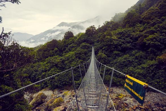 Copland Track, Swingbridge, Hängebrücke, Aussicht, view, Regenwald, Wanderung, wandern, 17 km, Kilometer, Südinsel, Neuseeland, Westküste, New Zealand,