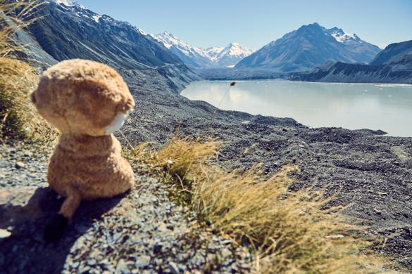Ed das Erdmännchen, Ed the meerkat, Ed das Erdmaennchen, Reisemaskottchen, maskot, Tasman Lake, Schnee, snow, Mountains, Berge, Begketten