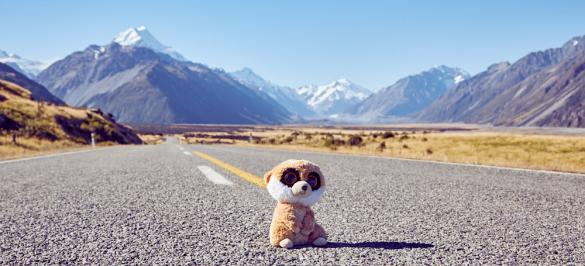 Ed, Mount Cook, Road, Strasse, National Park, Nationalpark, on his way, Reisemaskottchen, maskot, Reiseblog, Travelblog