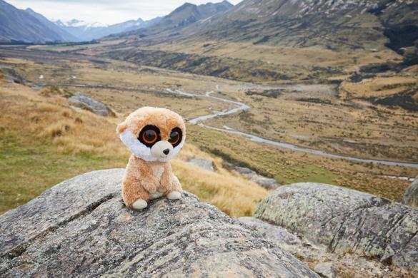 Ed, das Erdmännchen, das Erdmaennchen, Miles and Shores, Reiseblog, Travelblog, Reisemaskottchen, maskot, travel, Herr der Ringe, Lord of the Rings, LOTR, filming location, Drehort, Edoras, Rohan, Ausblick, view, Mount Sunday, Mt Sunday, New Zealand, Neuseeland