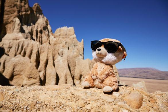 Ed, Educto, das Erdmännchen, das Erdmaennchen, Reisemaskottchen, Maskottchen, Meerkat, Clay Cliffs, Geheimtipp, maskot, climbing, klettert, happy