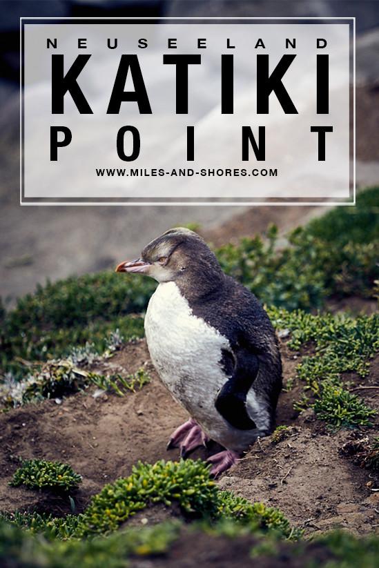 Der Katiki Point nahe Moaerki befindet sich auf der Südinsel von Neuseeland und befindet sich nahe eines Leuchtturms. Es handelt sich um ein Naturreservat, wo man Robben ganz aus der Nähe erleben kann. Außerdem haben wir dort Pinguine gesehen! Ein wirklich tolles Erlebnis bei einem Punkt, der noch nicht bei vielen Neuseeland Reisenden auf der Karte steht. #neuseeland #neuseelandreisen #neuseelandsüdinsel #milesandshores #katikipoint #lighthouse #robben