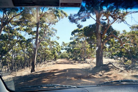 Kangaroo Island, Ausflug, Reise, Roadtrip, Urlaub, Urlaubsstimmung, toll, Abenteuer, Strasse, unsealed, road, Landschaft, landscape, Miles and Shores