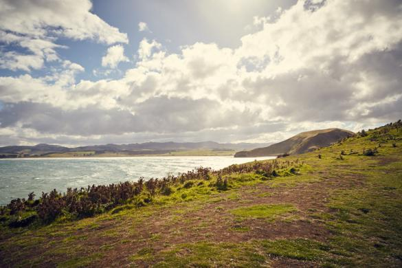 Katiki Point, Moeraki, Landschaft, Landscape, New Zealand, Neuseeland, Südinsel, wunderschoen, windig