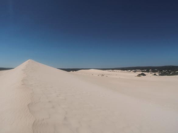 Little Sahara, Kangaroo Island, Sandboarding, fun, super, Spaß, sehr heiss, Dünen, Duenen, Sanddünen, Sandduenen