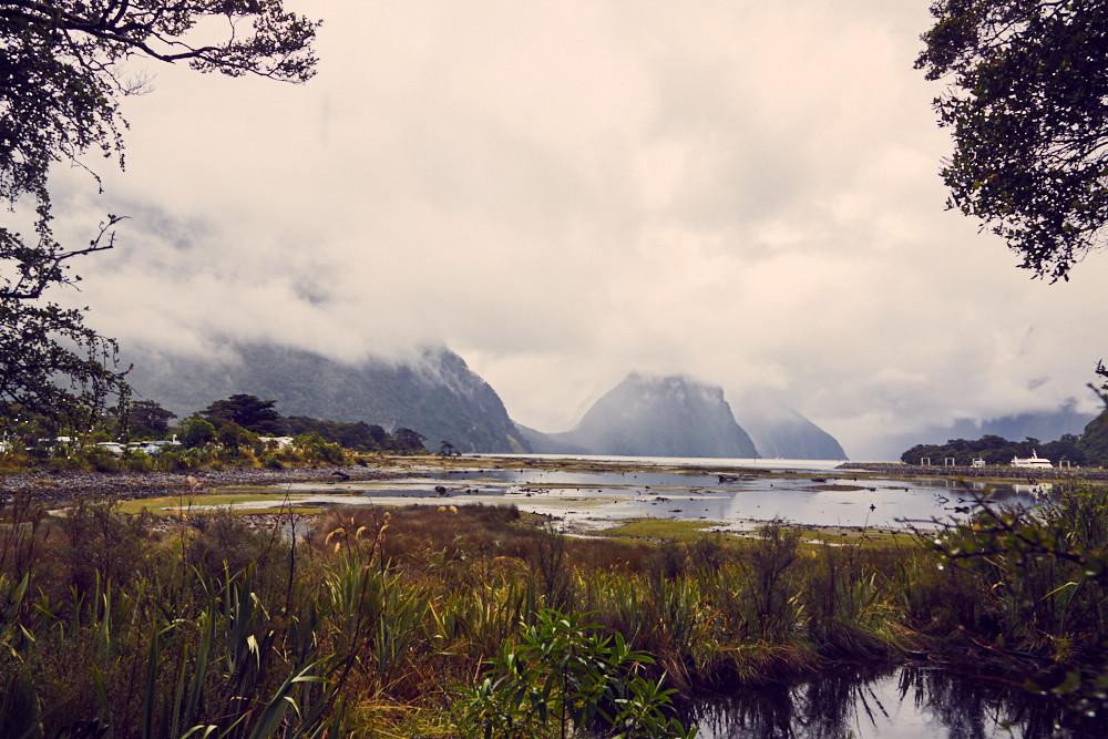 Milford Sound – eine nasse Angelegenheit