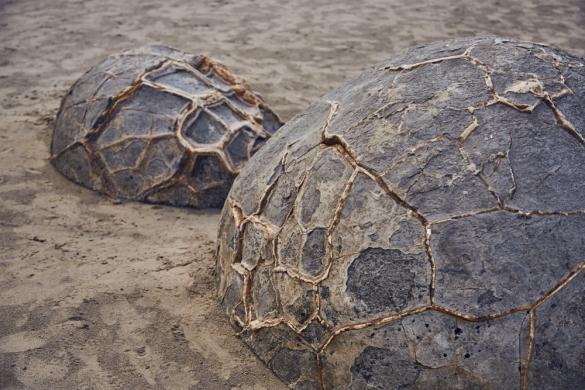 Moeraki Boulders, Struktur, Dinoeier, Neuseeland, Must See, Strand, Beach access, Strandzugang, gratis