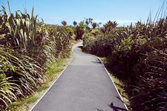Pancake Blowholes, Punakaiki, Weg, Fauna, Pflanzen, Ausflug, Neuseeland, Roadtrip, Miles and Shoes