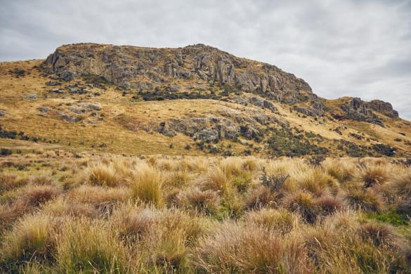 Roadtrip, Rohan, Edoras, Mount Sunday, Herr der Ringe, LOTR, Lord of the Rings, Berg, Mt Sunday, Privatgelaende, Privatgelände, Filmfans, Weg, track, wandern, kurze Strecke, Filmset, Neuseeland