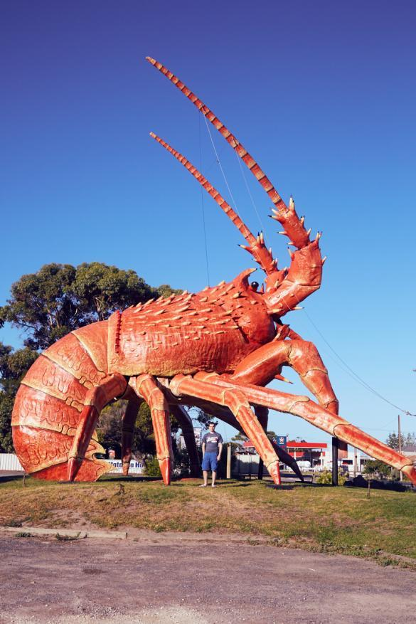 riesen Hummer, Ronnie, Miles and Shores, lag am Weg, Australien, Roadtrip, was man so sieht, Larry the Lobster