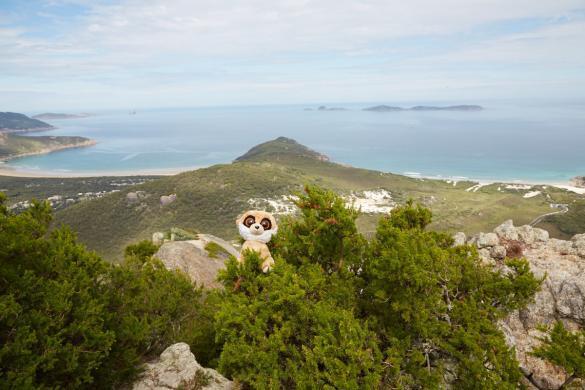 Ed, Mount Bishop, Wilsons Promontory Nationalpark, Reisemaskottchen, reisen, Roadtripp, Maskottchen