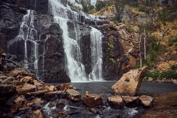 Ed, das Erdmännchen, Grampians, Nationalpark, National Park, Wasserfall, waterfall, Maskottchen, Landschaft, view