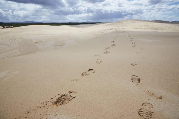 Fußspuren, im Sand, Australien, Sanddünen, Sand Dunes, Morimi Nationalpark