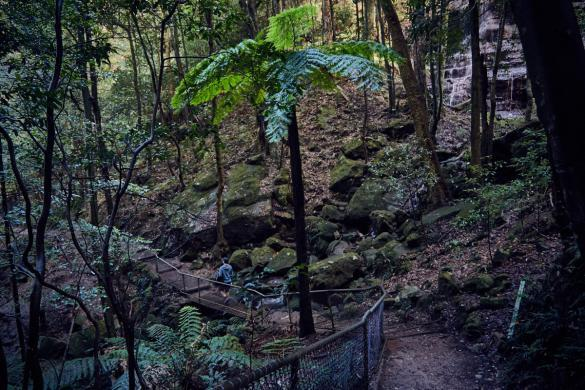 Blue Mountains, Katomba Falls Trail, Weg, wandern, Sydney, things to do