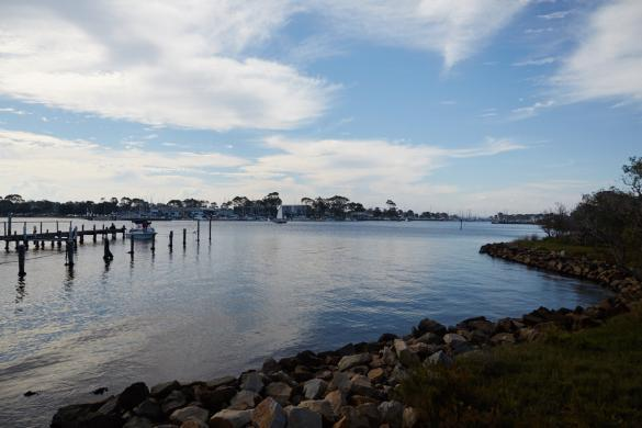 Raymond Island, Insel, Koala, Koalas, Track, Trail, Wasser, Bucht