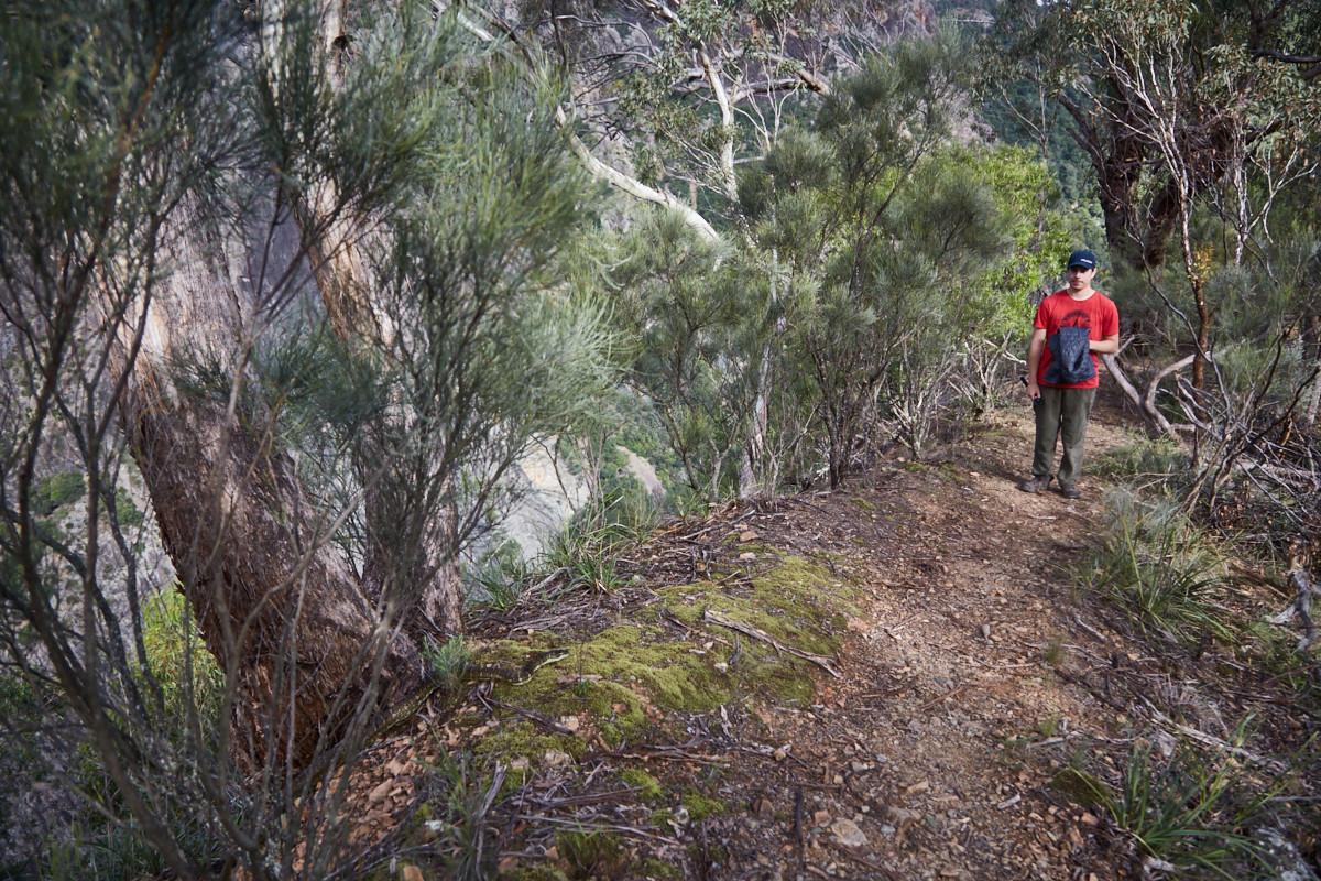 Diese Begenung mit einer Carpet Python Schlange in Australien wird Ronnie so schnell nicht vergessen! Im Wild Oxley River Nationalpark sind wir auf die Schlange gestoßen. Es ist das 3. Bild von unseren 6 lustigen Tierfotos