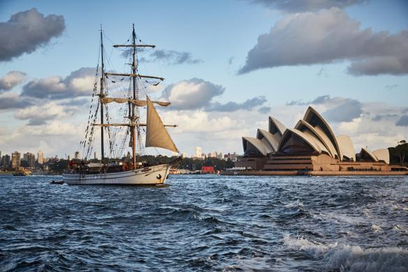 Sydney, Opera House, Segelboot, segeln, Hafen, view, cityview