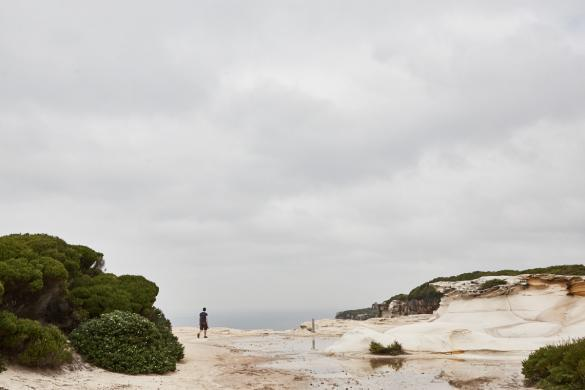 wandern, Royal Nationalpark, Ronnie, Miles and Shores, Küste, Landschaft, landcsape, Wanderweg