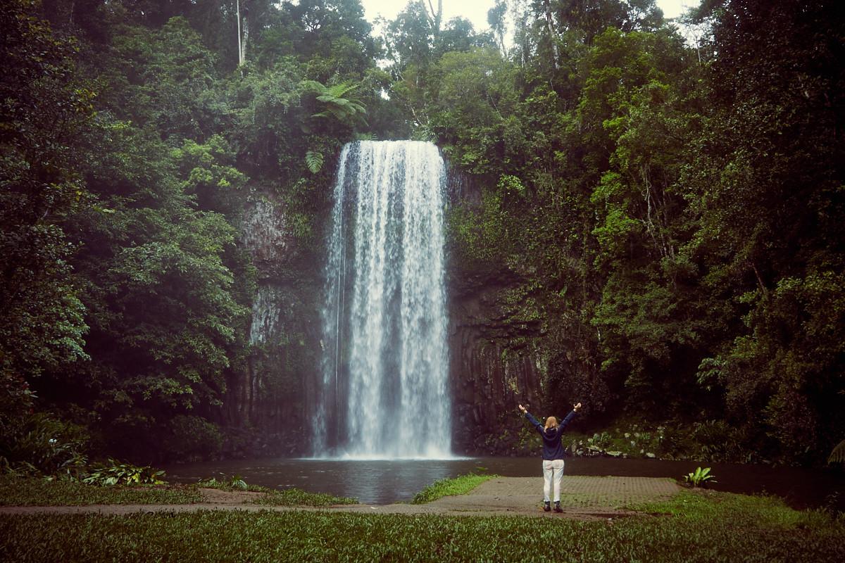 Millaa Millaa Falls & Waterfall Circuit