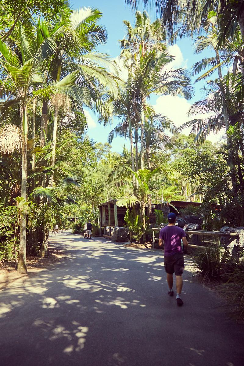 Australia Zoo, Australien Zoo, Tag im, Steve Irwin, Paradies, paradise, sunny day,