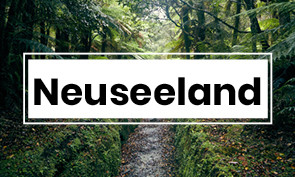 neuseeland, new zealand, reiseblog, travelblog, erfahrung, experience, wandern, kajakfahren, roadtrip, rundtrip, südinsel, mount cook, milford soiunds, miles and shores