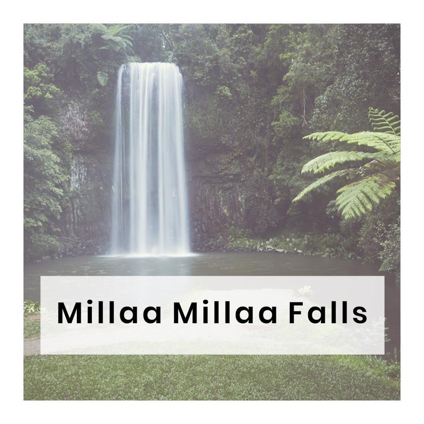 nächster, blog post, millaa millaa falls, australien, wasserfall, australien roadtrip, reiseblog