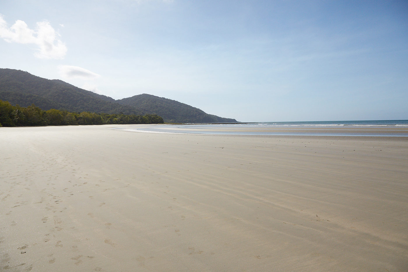 daintree, regenwald, rainforest, reiseblog, roadtrip, australien, milesandshores, forestwalk, cape tribulation, beach, strand