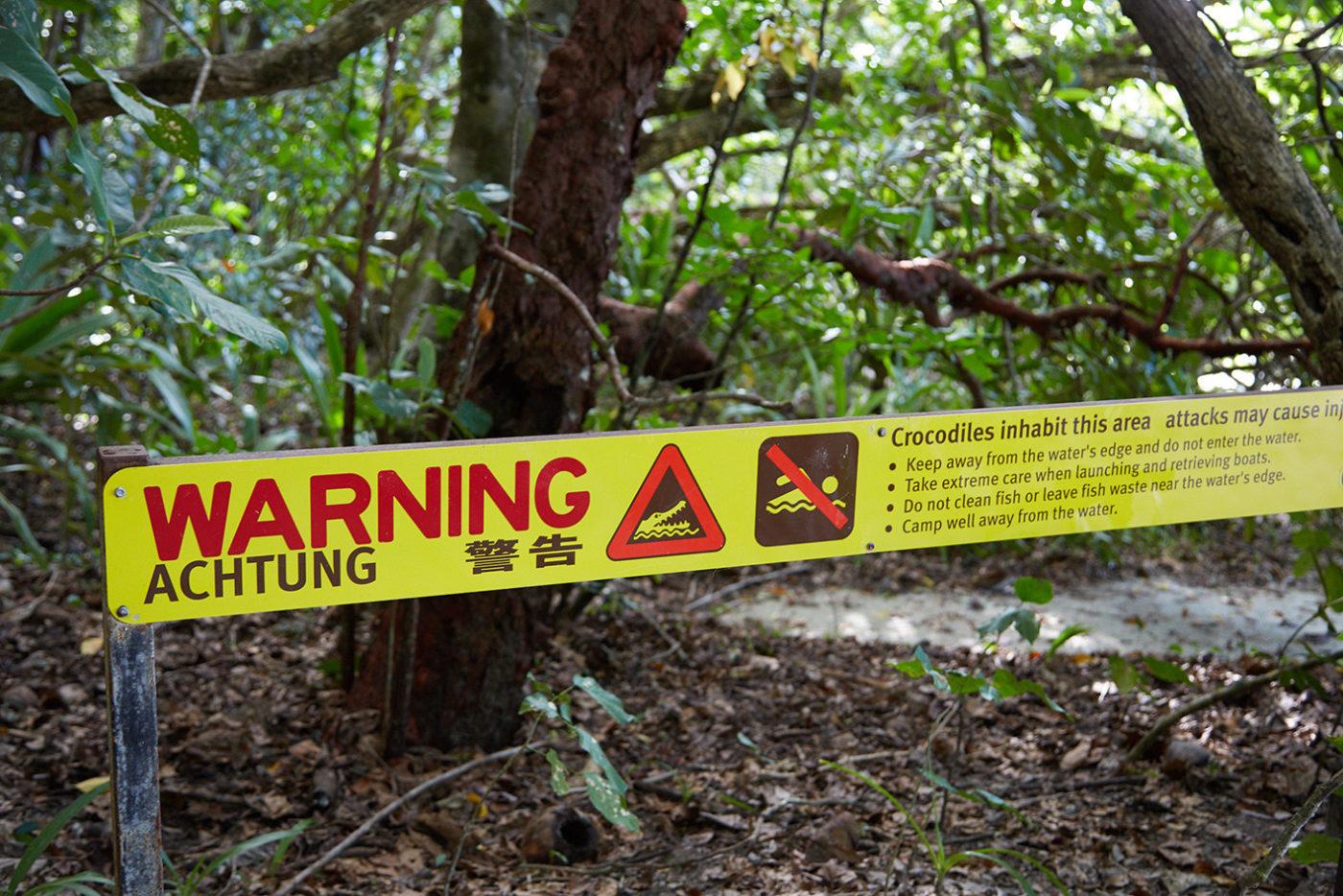 daintree, reiseblog, roadtrip, australien, milesandshores, cape tribulation, strand, beach, watch out for krokodiles, achtung krokodile