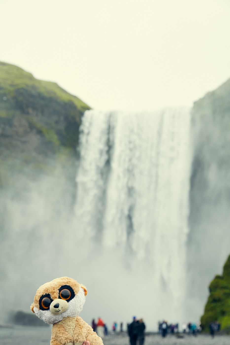 Skogafoss, Wasserfall, waterfall, Island, berühmt, famous, bucketlist, gigantisch, groß, viele Touristen, Ed, Ed das Erdmännchen, Reisemaskottchen