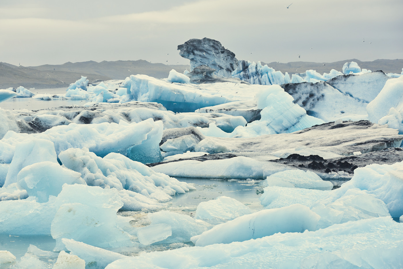 Jökulsárlón, eissee, ice lagoon, ice lake, lagoon, eis, eisschollen, gletschereis, bootstouren, reiseblog, reiseblogger, miles and shores, lichtstimmung, besondere, einzigartiges Island