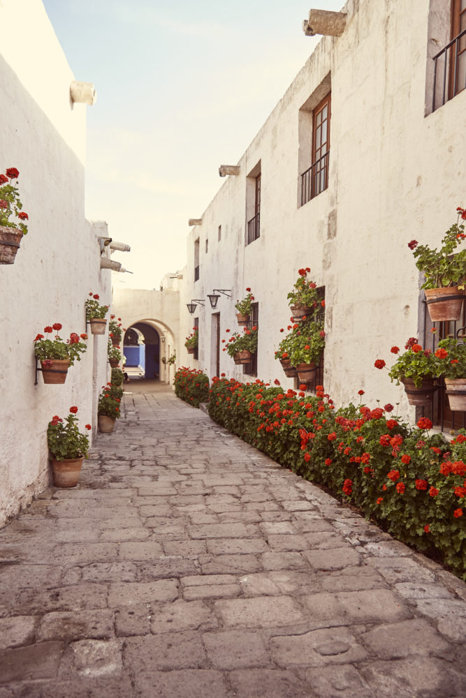 Zwischendurch weiße Fassaden mit roten Blümchen im Kloster Santa Catalina in Arequipa, 8 Must See Things in Arequipa, Peru