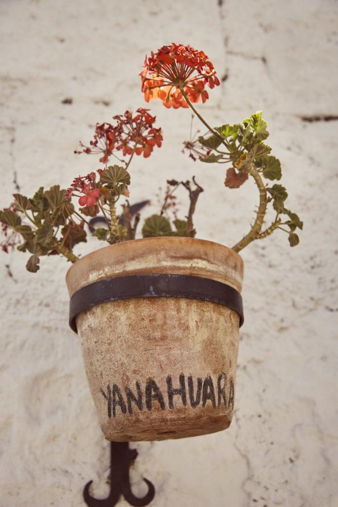 Blumentopf mit dem Schriftzug Yanahuara in Peru Arequipa
