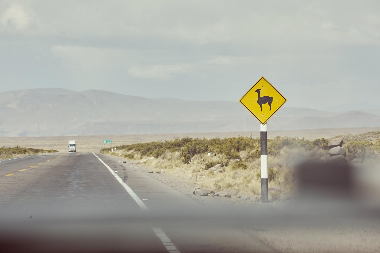 Das Autofahren in Peru mit allen offiziellen Verkehrsregeln und der gelebten Praxis. Hier sieht man ein Achtung Vikuna Schild auf der Fahrt von Arequipa nach Chivay