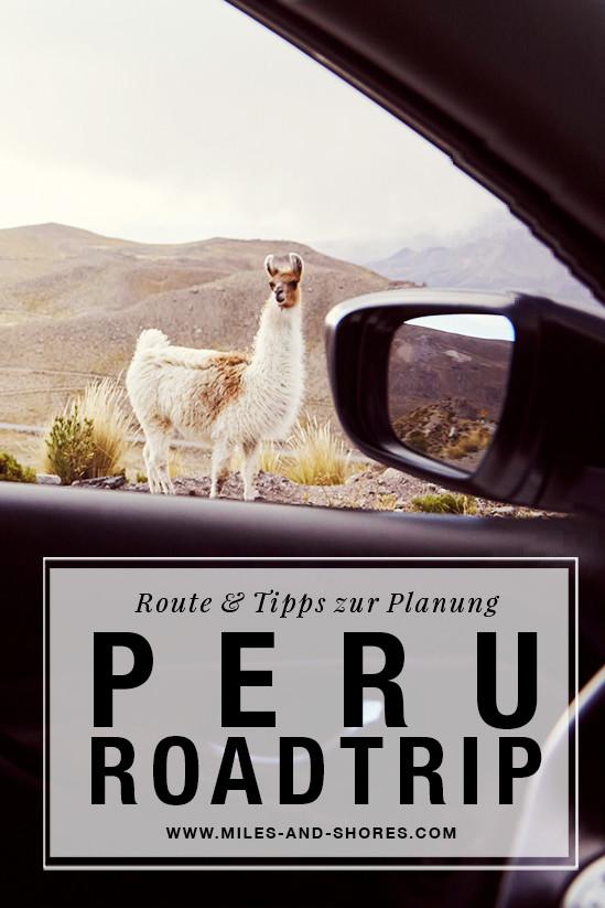 Es geht nach Peru! Darum musste auch die ultimative Peru Roadtrip Route gefunden werden! Die gesamte Route & Tipps zur Planung deines Roadtrips findest du auf unserem Blog. Außerdem haben wir kurz zusammen gefasst, worauf du bei der Mietwagenbuchung acht geben solltest. Lama das durch Autofenster schaut.