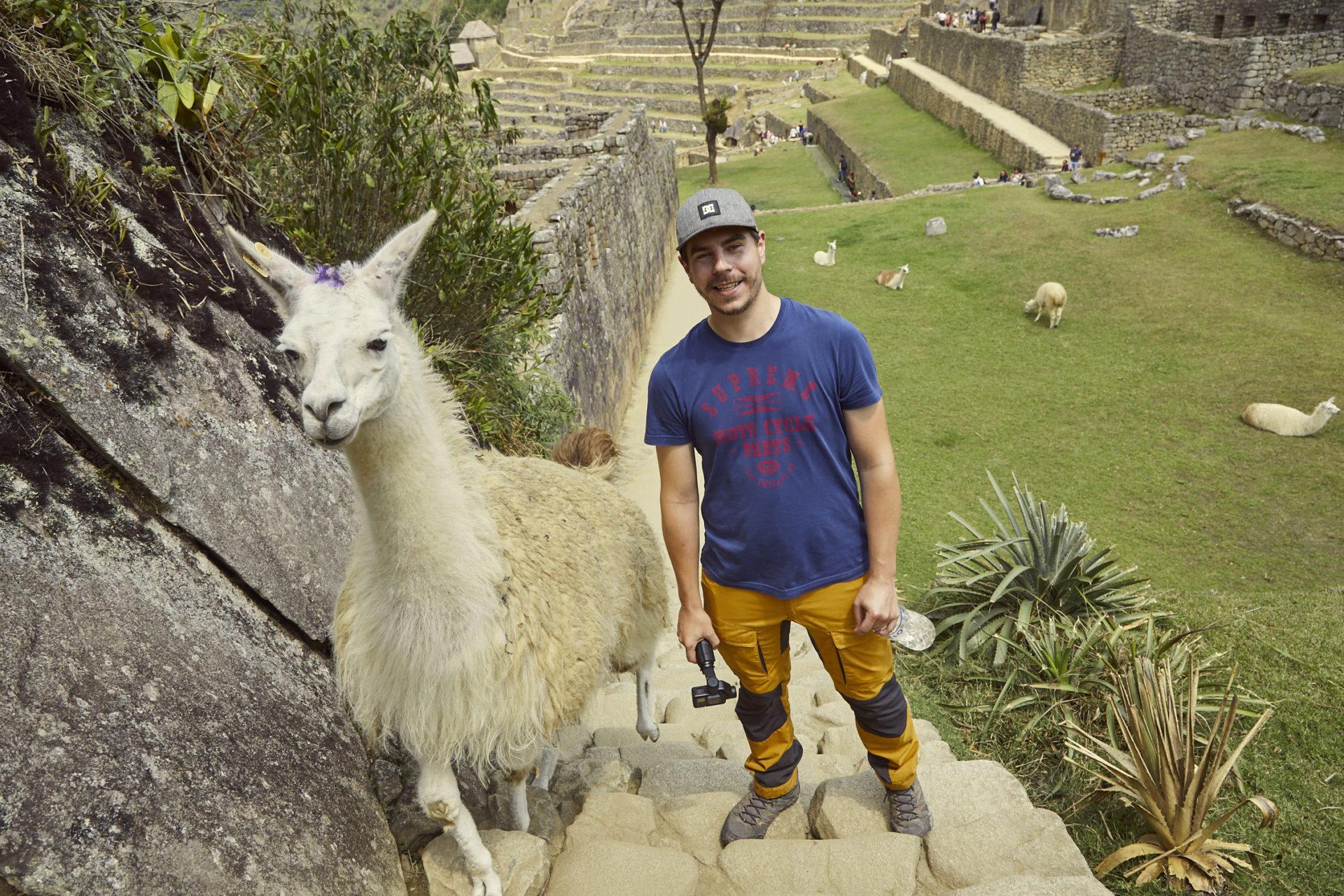 Foto Nummer 2 von unseren 6 lustigen Tierfotos, Eine witzige Begegnung mit einem Lama in Peru. Als Ronnie sich gerade umgedreht hatte; lief dieses Lama direkt hinter ihm auf die Treppe. So kam er noch zu einem ganz natürlichen Foto mit einem Lama in Machu Picchu während unseres Peru Urlaubes