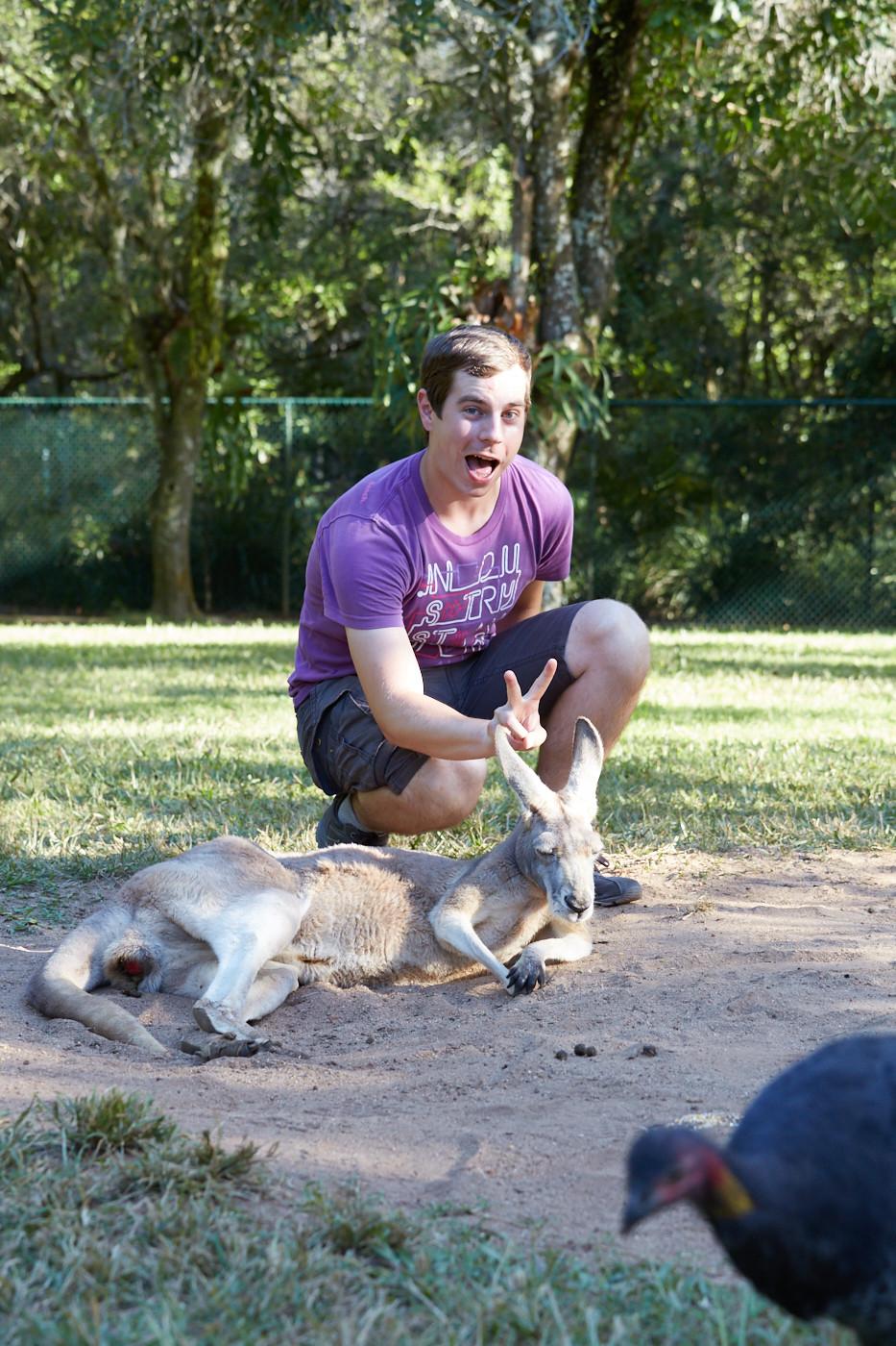 Foto 1 von unseren 6 lustigen Tierfotos. Ronnie konnte letztendlich doch noch ein Foto mit einem Wallaby machen. Der Truthahn hatte sich noch aufs Foto dazugeschlichen