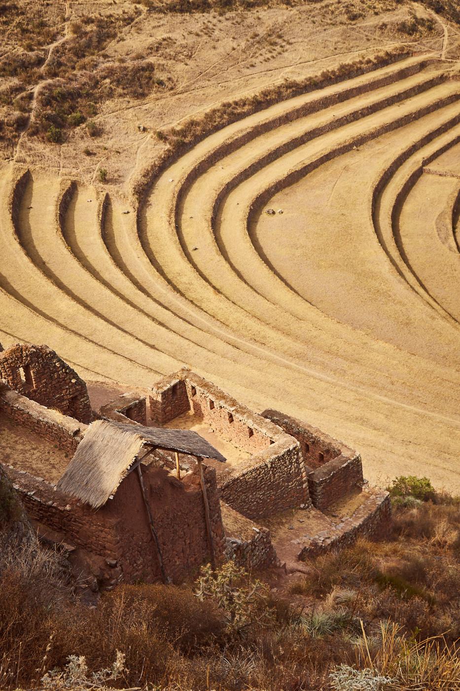 Die Felder auf den Terrassen von Pisac im Sacred Valley