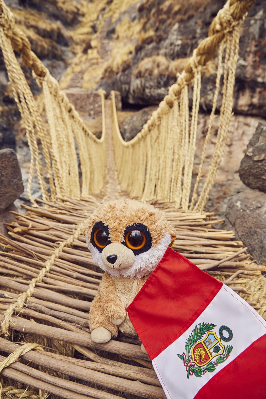 Ed unserem Reisemaskottchen hat die Brücke auch gefallen, er hält die peruanische Flagge