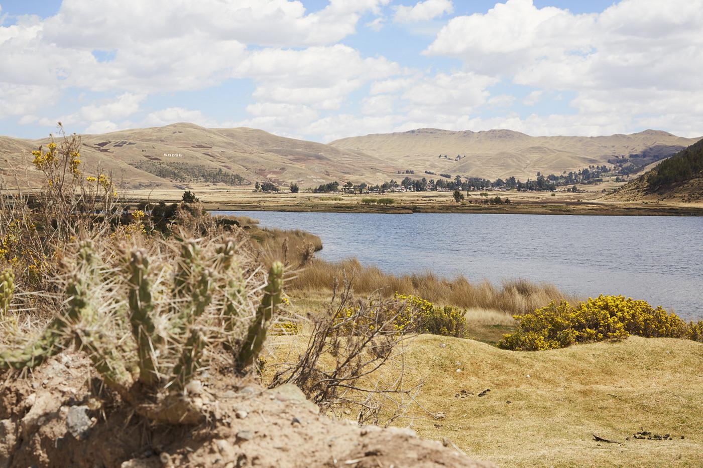 Die Laguna Acopia ist ein kleiner See direkt an einem verschlafenen Dort entlang der Route zur Rope Bridge. Das hellblau / graue Wasser ist umgeben von kleinen Kakteen und karger Landschaft