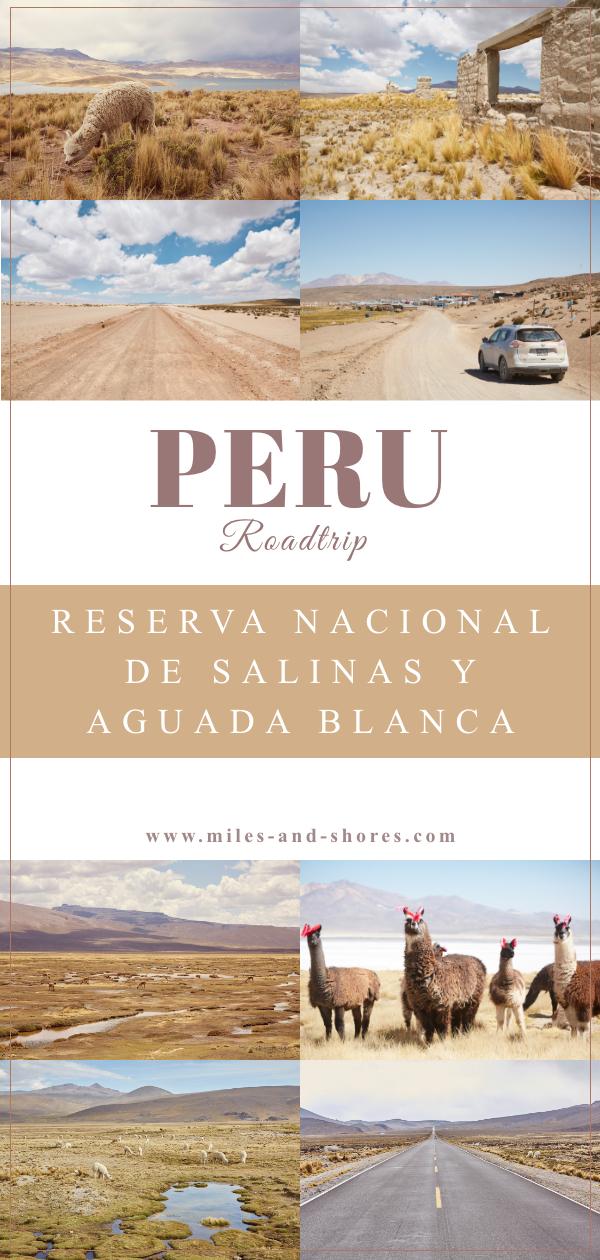 Das Reserva Nacional de Salinas y Aguada Blanca sollte bei einer Peru Reise weit oben auf der Bucket List stehen. Der Nationalpark befindet sich im Süden von Peru und besticht durch unglaublich schöne Landschaften und wild lebende Guanacos! In unserem Guide liefern wir 3 Routenvorschläge, Tipps zur Planung deiner Reise und worauf du achten solltest. Achtung: Süße Alpakafotos sind auch wieder mit am Start! #perureise #peru #perutravel #salinasyaguadablanca #roadtrip