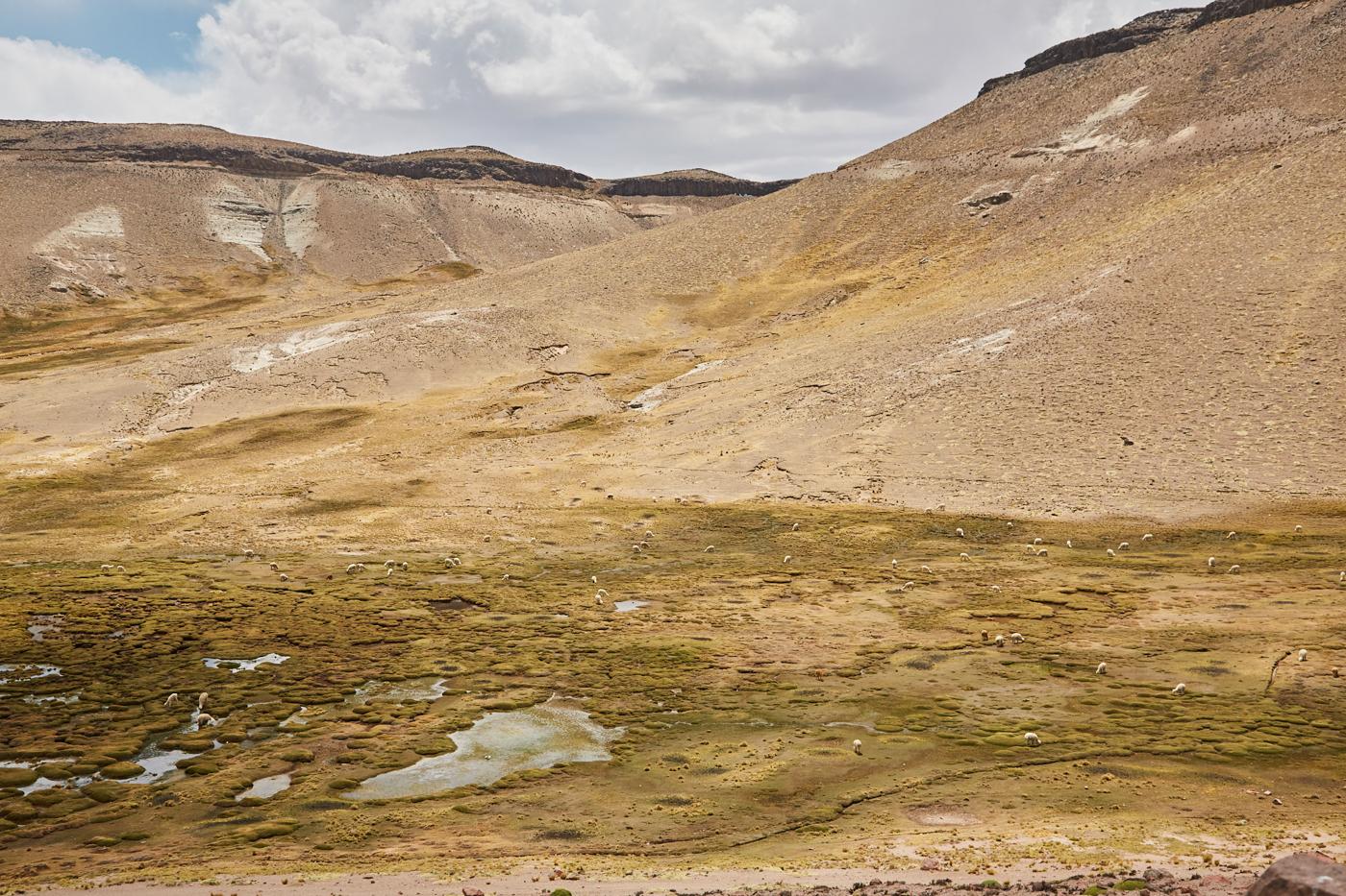 Sumpflandschaften in den Tälern der steinigen Berge im Nationalpark Salinas y Aguada Blanca in Peru