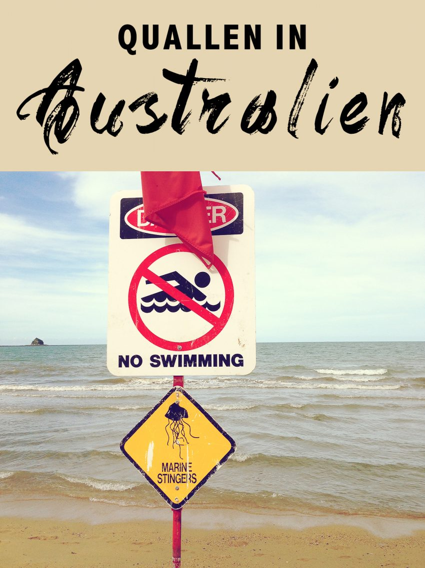 quallen in australien, schild, warning, marine stingers, schwimmen in australien, roadtrip, miles and shores, vorbereitung